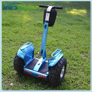 Ecorider zwei Rad-Selbst, der elektrischen Chariot-Roller balanciert