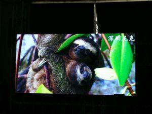 Tela de LED de publicidade interior ecrãs LED