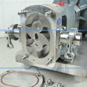 ステンレス鋼の食糧チョコレート転送の丸い突出部の回転子ポンプかギヤポンプ