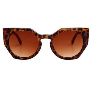 Rectángulo recientemente de gafas de sol de moda