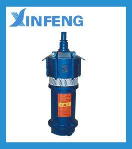 Versenkbare Pumpe des Wasser-Qd-0.75-2