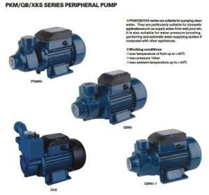 周辺ポンプ水ポンプ(PKM/QB/XKS)