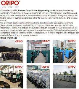 Фошань Oripo генератор производителей в Гуандун