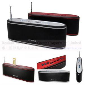 USB/SD динамик, MP3/MP4 динамик (MS-PS608)
