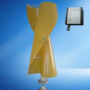 Génératrice éolienne de 300 W avec contrôleur de charge