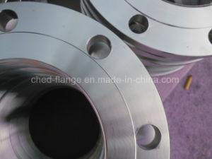 Cuello de la soldadura de acero inoxidable bridas forjadas en CD-FL3000.