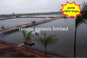 Fodera Geomembrane dello stagno dell'HDPE per l'azienda agricola del gambero