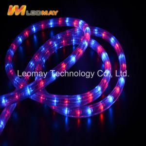 Cer RoHS der hohen Helligkeits-220V anerkanntes der Ebene-3 Seil-Licht Draht RGB-LED