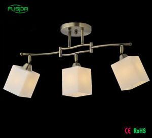 Moderne quadratische Leuchter-Glasbeleuchtung-Glasbeleuchtung