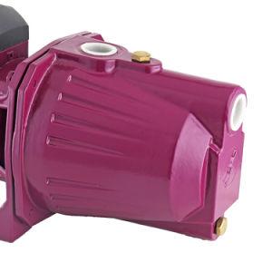 최고 가격 이탈리아 전동기 수도 펌프 기계 각자 흡입 제트기 100 100L 수도 펌프