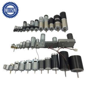 50kg/cm 12V DC Motor con caja de engranajes de reducción de marcha