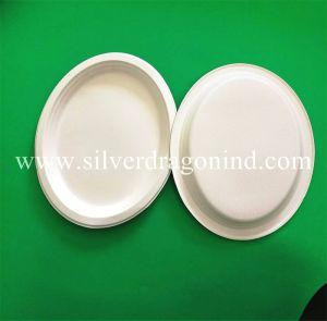 La bagasse de canne à sucre jetable biodégradable ovale de la plaque de papier de 7 pouces