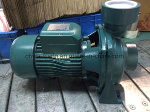 Hf électrique de série pour l'irrigation de la pompe à eau centrifuge