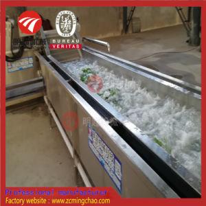 Macchina di verdure di piccola dimensione di lavaggio/pulizia di disinfezione dell'ozono