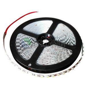 Luz de tira flexível do diodo emissor de luz da alta qualidade SMD3528 120LEDs/M