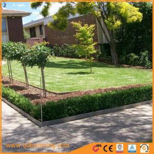 Colore ricoperto modific il terrenoare l'acciaio Edgings del giardino