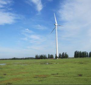 De Turbine van de wind Horizontale 2000W