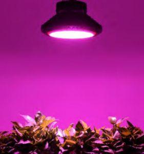 Indicatore luminoso completo di spettro personalizzato alluminio LED del UFO 200W IP65 dell'Europa del Ce crescente