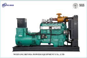 Uitstekend Aardgas Generator Overgegaane ISO 9001/14005