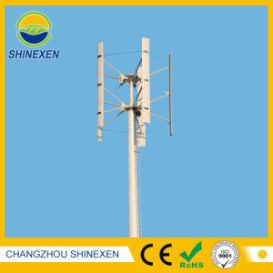 Systeem van de Turbogenerator van de Wind van de Fabriek van China 400W het Verticale