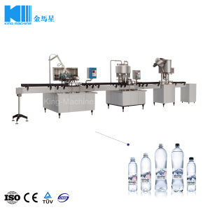 Linearer Typ Kleinkapazitätsflaschen-Wasser-Verpackungs-Pflanze