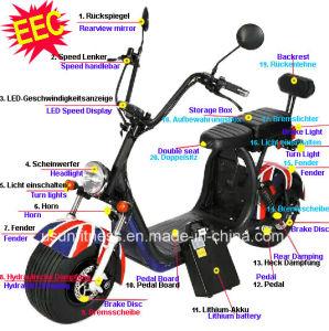 Von der EG gebilligter elektrischer Motorrad-Roller mit 2 Geräten entfernen Batterien mit w-Motor 1500