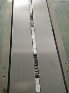 ビスケットのための自動水平のパッキング機械