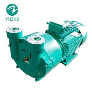 2BV2 060n o aço inoxidável da bomba de vácuo de anel líquido