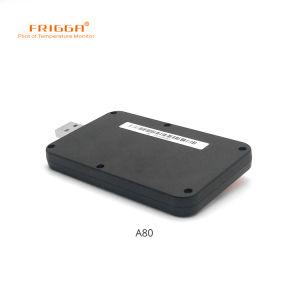 Echt - Interne Sensor 28800 van het Registreerapparaat van de Gegevens van de tijd en Van de usb- Temperatuur Punten