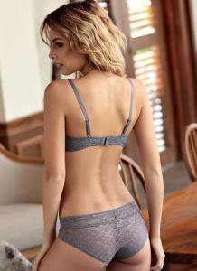 Los encajes de ropa interior sexy Push up Bra de inmersión y Panty conjunto