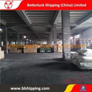 Les agents de fret transport de conteneurs de la Chine à la logistique de Manille aux Philippines transitaire