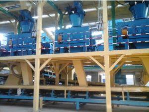 Professionele Fabrikant die van de korrel van de Meststof machine maken