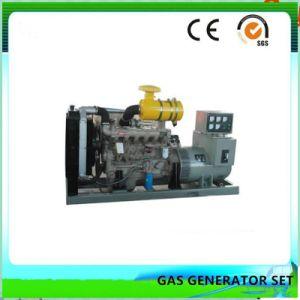 Cer und Lebendmasse-Generator-Set DER ISO-anerkanntes grünen Energien-100kw