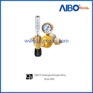 Argon/Co2 Regulator voor Cutting Purpose (2W16-1091)
