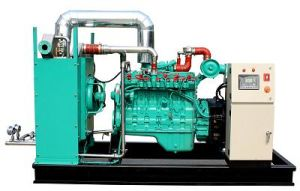 80kw 100kVA de potencia del generador de biogás Gas Eléctrico