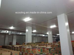 Kundenspezifische integrierte Kaltlagerung für Landwirtschafts-Nahrungsmittelhandels-Markt
