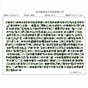합성 다이아몬드 미크론 분말 - 경제적인 유형 (DMP-E)