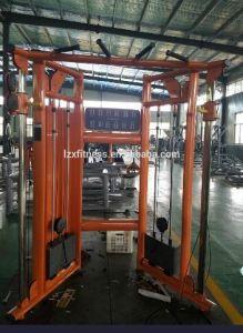 중국 공급자 직업적인 체조 장비 기능 조련사 적당 장비