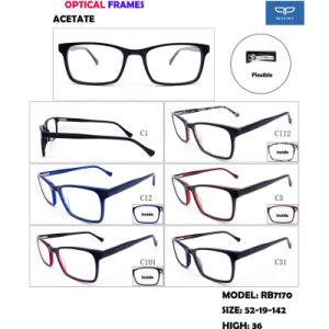 De nieuwe Klaar Goederen van de Levering van de Fabriek van de Glazen van Eyewear van het Frame van de Acetaat van de Manifestatie van de Aankomst Optische direct