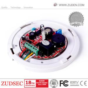 駆動機構の電磁石の弁またはマニピュレーターのための12-24VDCによってワイヤーで縛られるガス探知器