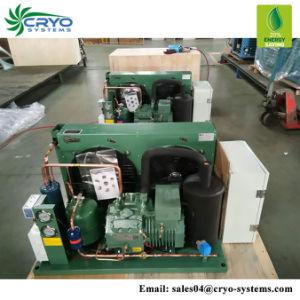 0.33à HP de 4HP Bitzer Tecumseh Réfrigération Unité de condensation