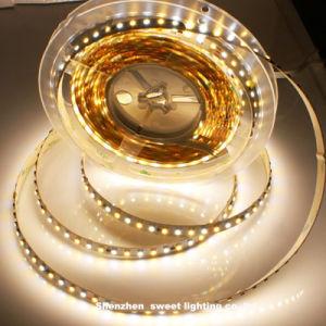 Indicatore luminoso di striscia flessibile dei chip LED di colore bianco dell'interno SMD 3528 della decorazione 300LEDs/M RGB