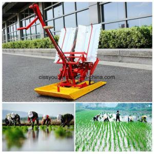 6-7列のトウモロコシの穀物のムギのシードプランター機械を販売する工場