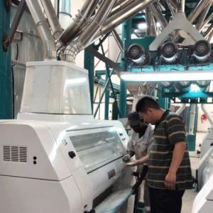 Moulin à farine de maïs de la machine de traitement de l'Afrique Posho repas