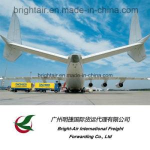 Het internationale Uitdrukkelijke Volgen en de Levering van het Bedrijf van de Vrachtvervoerder van de Logistiek/Luchtvracht die van China verschepen aan wereldwijd/Globaal