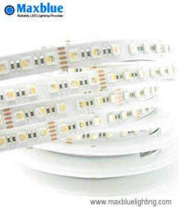 Os LEDs RGBW numa 84/M Luz Faixa de leds flexíveis