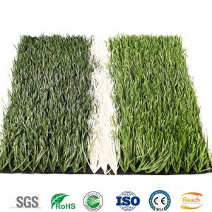 Bestes auserlesenes Schule-Sport-Verein-künstliches Fußball-Gras