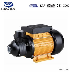 0.75HP Idb60の周辺水ポンプ