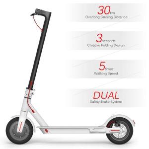 Neuer Falz-elektrischer Roller RoHS in China mit angemessenem Preis