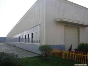 Edificio profesional de la estructura de acero para el taller/el almacén (SSWW-16052)